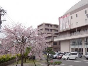 学校周辺_H27.4-1